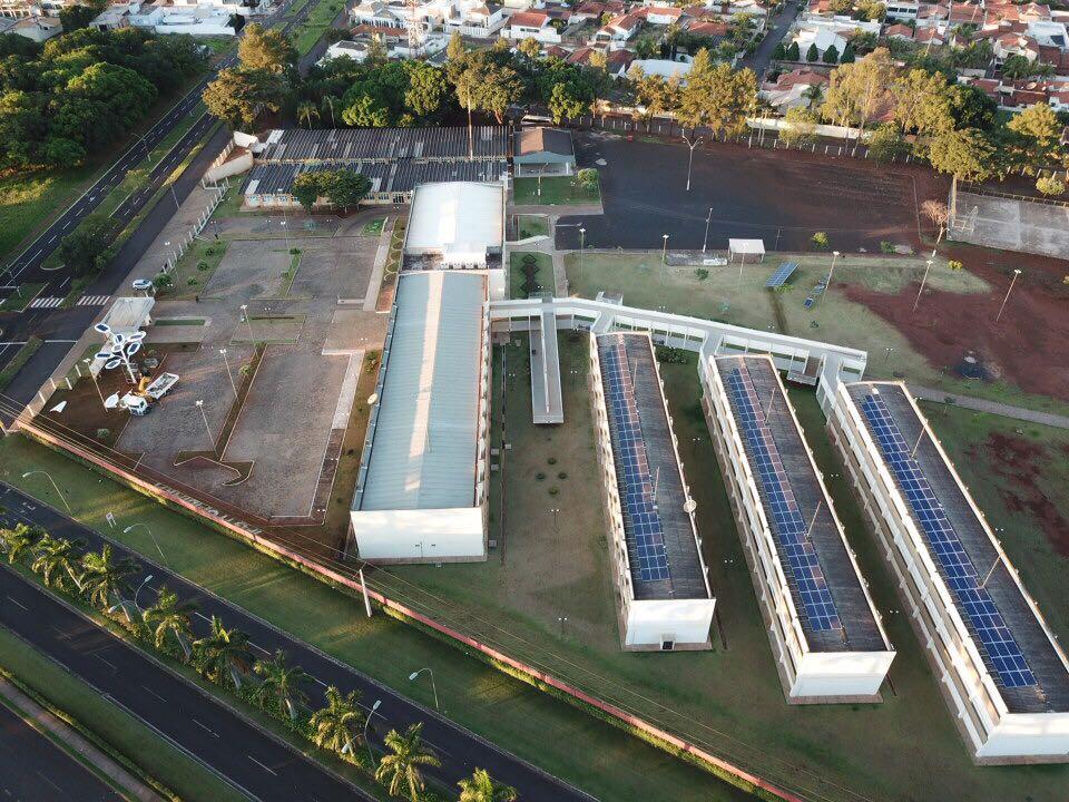 arvore solar (4)