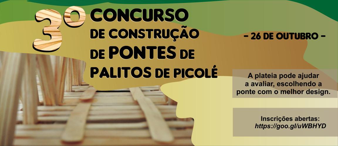 Banner site - Pontes de palitos de picolé 2017